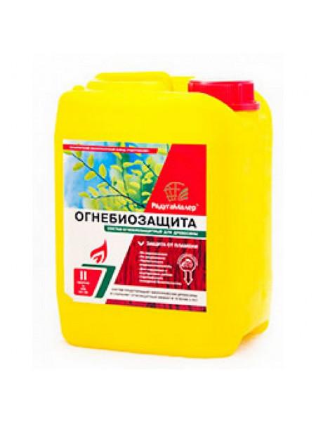 Состав Огнебиозащитный бесцветный 2кат 5л Радуга, шт